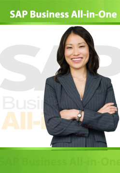 SAP Business All-in-One training