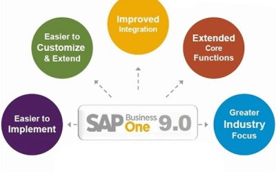 What's New In SAP Business One v9.0